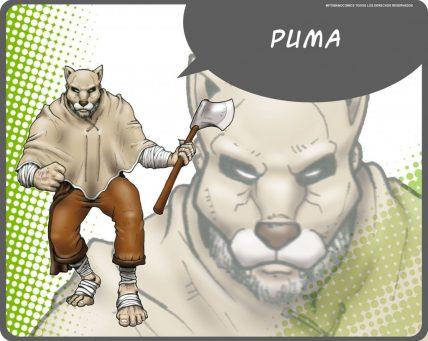 puma 1024x818